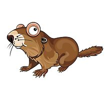 Groundhog Cartoon Character Photographic Print