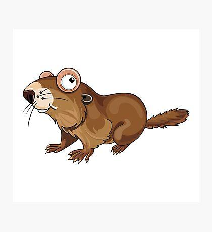 Groundhog Cartoon Character Photographic Print