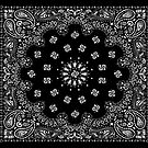 Paisley Black and White by huliodoyle