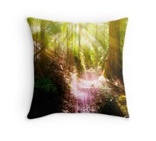 Humidity ... Throw Pillow