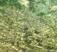 Sea Floor at Bogey Hole by Bernadette Smith (c) by smithrankenART