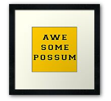 The Lonely Island - Awesome Possum - Oscars Performance Framed Print