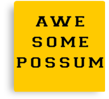 The Lonely Island - Awesome Possum - Oscars Performance Canvas Print