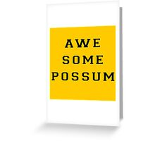 The Lonely Island - Awesome Possum - Oscars Performance Greeting Card