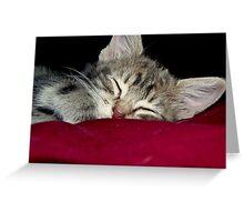 Sleepy Time Greeting Card