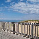 Whitefish Point Deck by Megan Noble