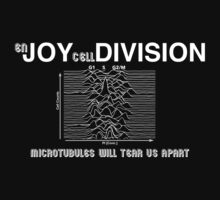 (en) JOY (cell) DIVISION (white text) by CellDivisionLab