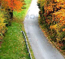 road not taken by pinkjess22