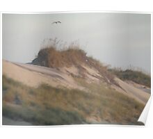 Outer Banks Sand Dune Poster