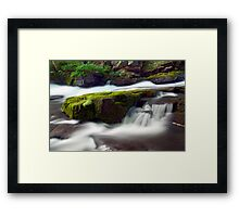 Seperate Paths Framed Print