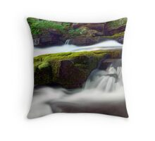 Seperate Paths Throw Pillow