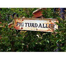 Gold Country Street Sign Photographic Print