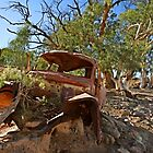 The Old Ute by Pamela Inverarity