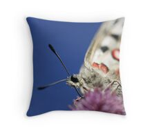 Apollo Butterfly Throw Pillow