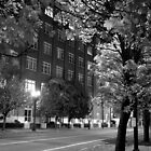 Albers Mill Building, Front Street, Portland, Oregon by Chris  Tolomei
