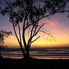 Australian Sunrise by Agood