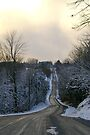 Country Road in Winter by Larry Llewellyn