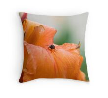 Canna & Friend, Mt Nathan, Queensland, Australia Throw Pillow