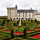 Villandry Castle - Loire Valley - France 2 by Alison Cornford-Matheson
