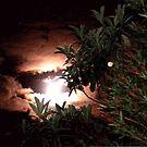 Eerie night sky by evapod