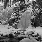 Icy falls (b&w) by zumi