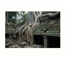 Rooted in Antiquity (2) Art Print