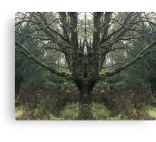 Mirror Tree 2 Canvas Print