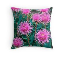 Stirling Ranges Coneflowers Throw Pillow