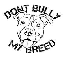 Pitbull:Dont Bully my breed by zalfotarum