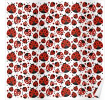 Ladybugs and Red Flowers Poster
