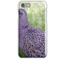 Juvenile pheasant iPhone Case/Skin