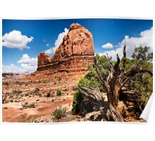 The Organ Rock, Arches NP Poster