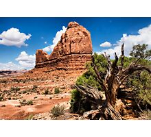 The Organ Rock, Arches NP Photographic Print