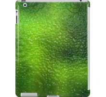 Scenic background 10 iPad Case/Skin