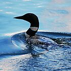 Loony Loon by zachdier