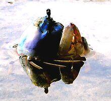 Emerging Crab  by grarbaleg