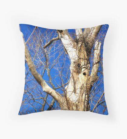 White Bark Tree Throw Pillow