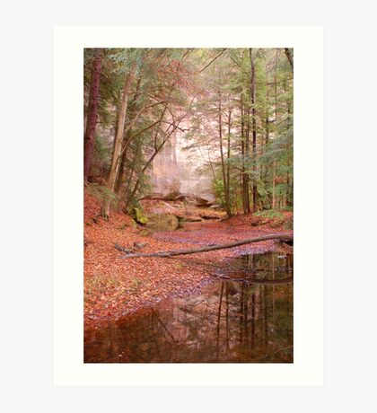 Fall at Hocking Hills Art Print