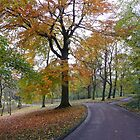 Autumn in Heaton Park by Onions