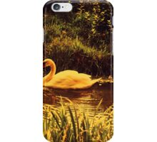 Swan at the Golden Lake  iPhone Case/Skin
