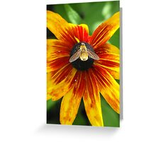 Glow Little Bumble Bee! Greeting Card