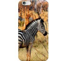 Zebras at sunset iPhone Case/Skin