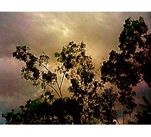 Cloud Tapestry Photographic Print