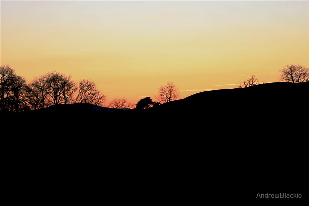 Winter Afternoon by AndrewBlackie