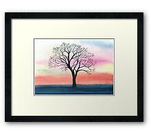 Winter oak in sunset Framed Print