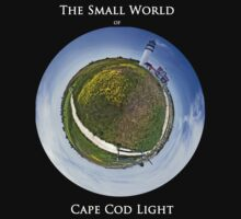 The Small World of Cape Cod Light by Alyeska