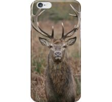 The Stare Of The Stag iPhone Case/Skin
