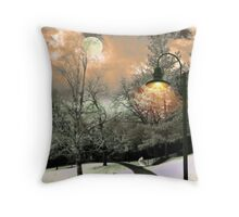 Wintery Walkway Throw Pillow