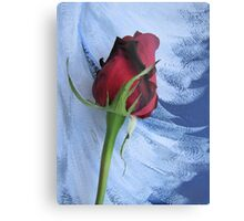 Not Just Another Red Rose Metal Print