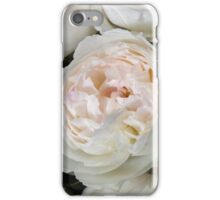 Pale pink and creamy old-fashioned roses iPhone Case/Skin